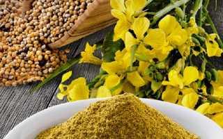 Способы применения горчицы для крепких суставов: лечебные свойства продукта, рецепты народных средств и рекомендации по их использованию, эффективность терапии