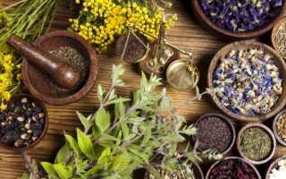 Лечение гепатита б народными средствами — Всё о печени