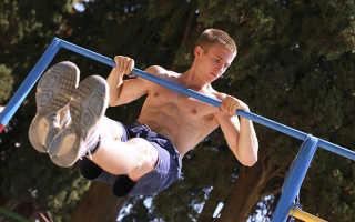 Бодибилдинг и фитнес: упражнения, тренировки, спортивное питание, курсы на массу, на сушку. Можно ли накачать бицепс на турнике