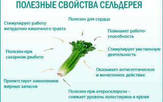 Сельдерей против простатита