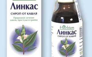 Линкас сироп от кашля: что собой представляет препарат, от чего помогает и как действует лекарство, отзывы покупателей