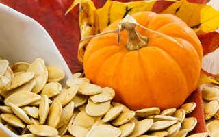 Семена тыквы — полезные и опасные свойства семечек тыквы