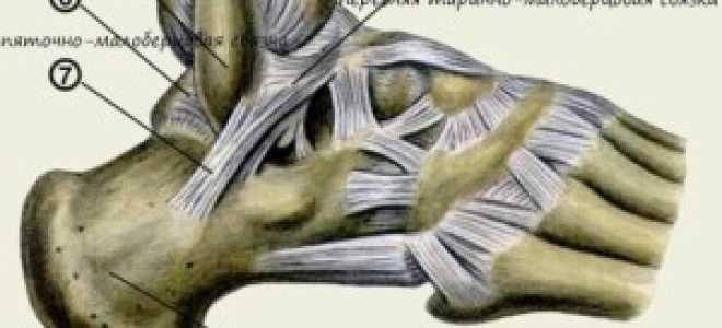Растяжение связок голеностопа: причины и симптомы патологии, правила оказания первой помощи, современные и народные методы лечения