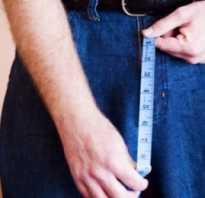 Как правильно измерить длину и толщину члена?