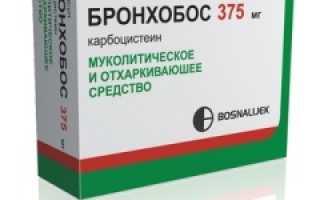 Бронхобос сироп: механизм действия и курс лечения, фармакологические характеристики, способ применения и дозировка препарата