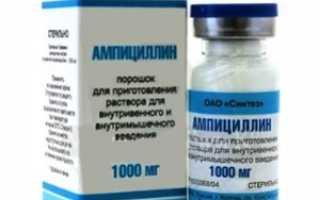 Ампициллин уколы: фармакодинамика и фармакокинетика, фармакологическое действие и меры предосторожности, влияние на организм и выведение