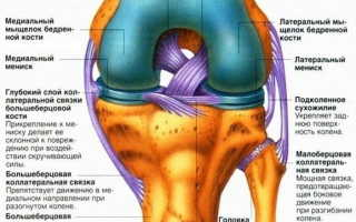 Дегенеративные изменения мениска коленного сустава: особенности патологии, как остановить, диагностика и лечение заболевания