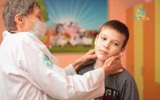 Признаки укуса клеща у человека: инкубационный период и симптомы заражения, правила оказания первой помощи и профилактические мероприятия, возможные последствия
