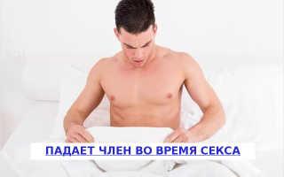 Почему у мужчины во время акта член встает и падает: физиологические и психологические причины отклонений, способы лечения эректильной дисфункции в домашних условиях